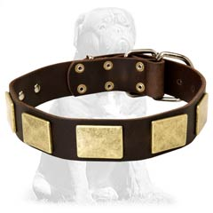 Skillfully decorated Mastiff collar with plates