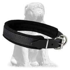 Felt padded inside leather collar