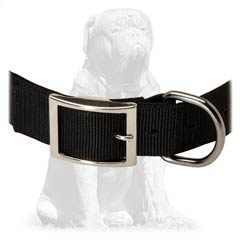 Everyday strong nylon collar