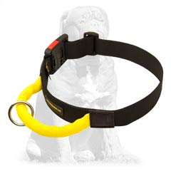 Light weight nylon collar