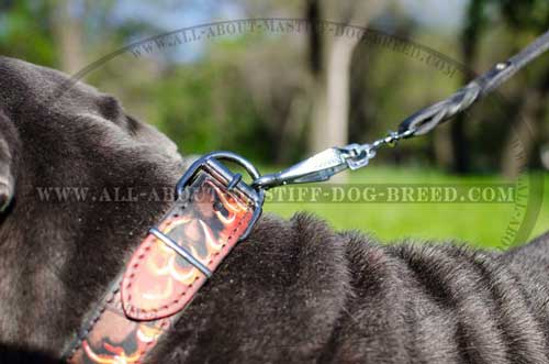 special collar with bright flames