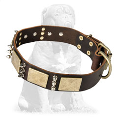 Super strong and wide leather collar