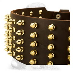 Durable safe leather collar