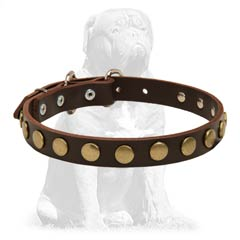 Strong  leather collar with shiny decorations