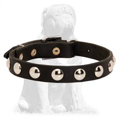 Nickel plated leather collar