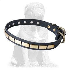 Durable leather collar with plates