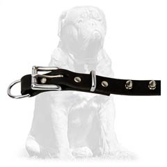 Eco-friendly  leather collar