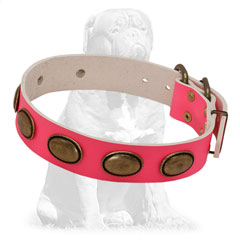 Durable leather collar with vintage oval plates
