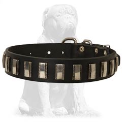 Durable shiny leather collar