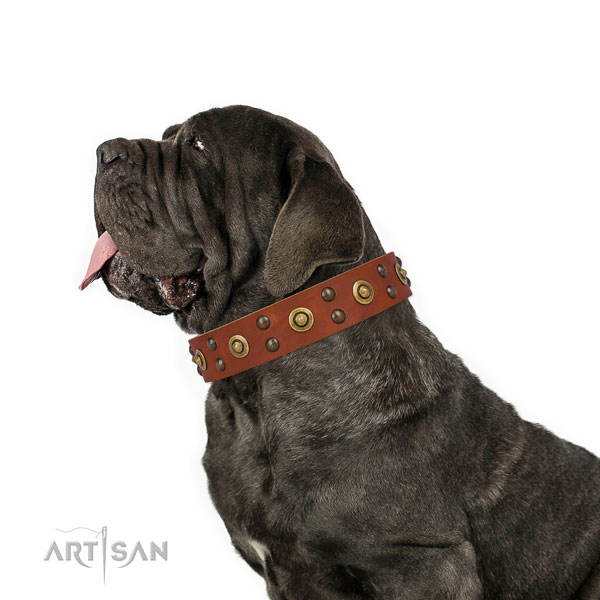 Mastiff unusual leather dog collar for basic training title=Mastiff full grain genuine leather collar with adornments for comfy wearing