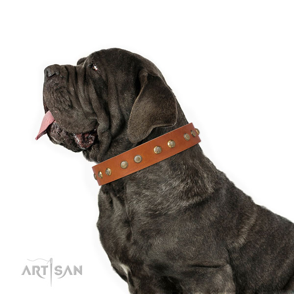 Mastiff inimitable full grain leather dog collar for comfortable wearing title=Mastiff full grain leather collar with decorations for easy wearing