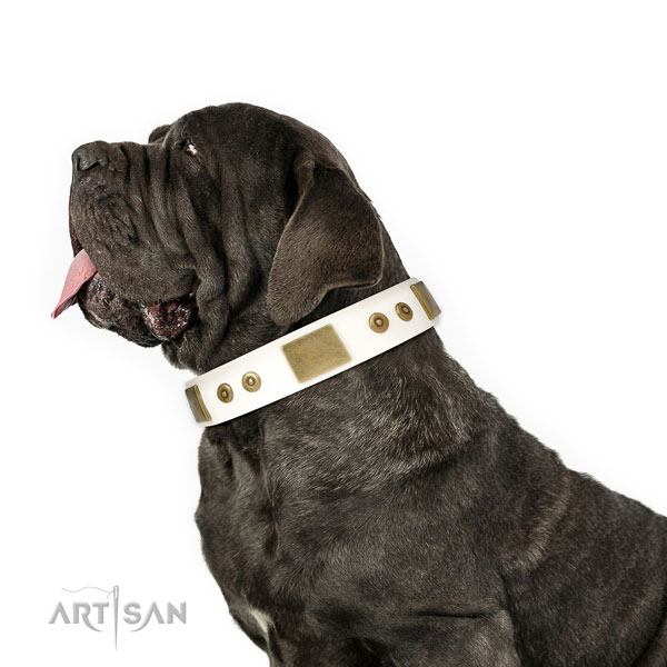 Mastiff comfortable leather dog collar for walking title=Mastiff full grain leather collar with decorations for comfy wearing
