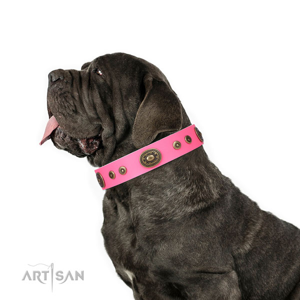 Mastiff adorned full grain genuine leather dog collar for everyday walking title=Mastiff full grain natural leather collar with embellishments for comfy wearing