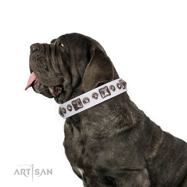 Mastiff adorned leather dog collar for basic training title=Mastiff genuine leather collar with embellishments for handy use