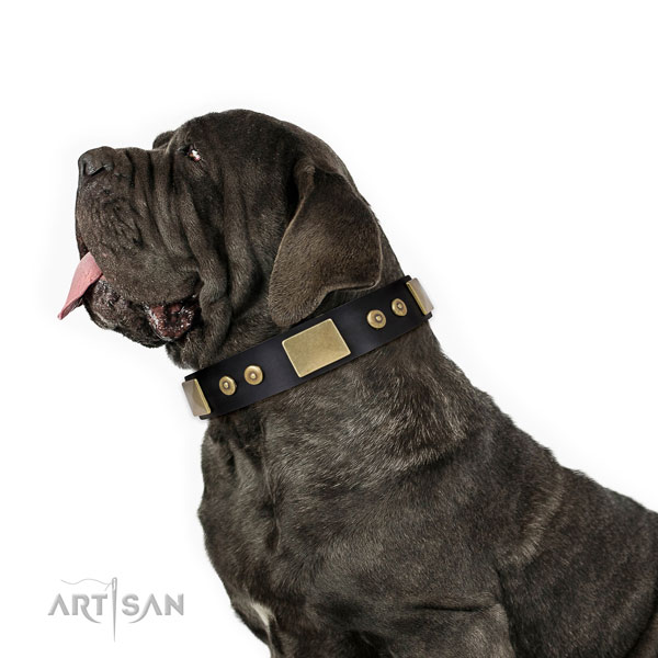 Mastiff stunning leather dog collar for handy use title=Mastiff natural genuine leather collar with decorations for everyday use