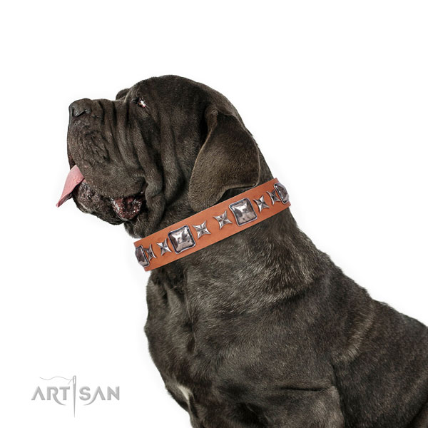 Mastiff decorated leather dog collar for handy use title=Mastiff leather collar with embellishments for walking