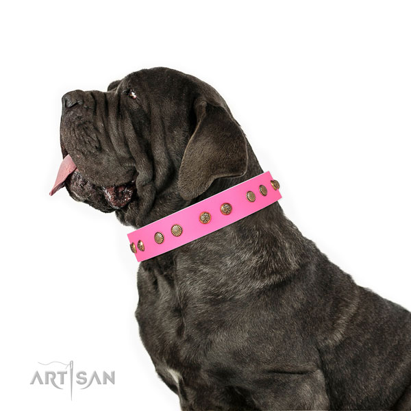 Mastiff easy adjustable leather dog collar for everyday walking title=Mastiff genuine leather collar with decorations for everyday walking