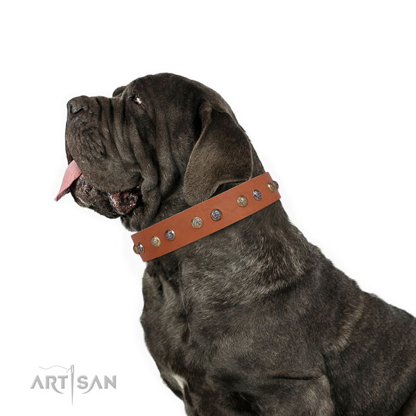 Mastiff comfortable full grain genuine leather dog collar for comfy wearing title=Mastiff full grain natural leather collar with decorations for daily walking
