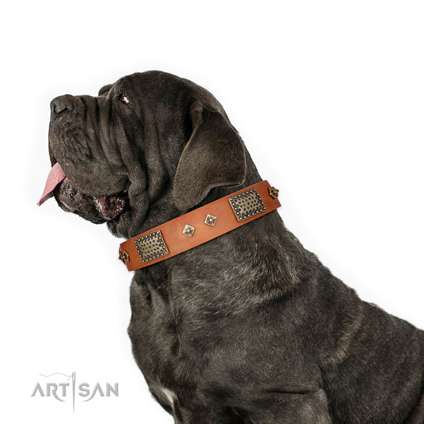Mastiff embellished leather dog collar for easy wearing title=Mastiff full grain leather collar with adornments for comfy wearing