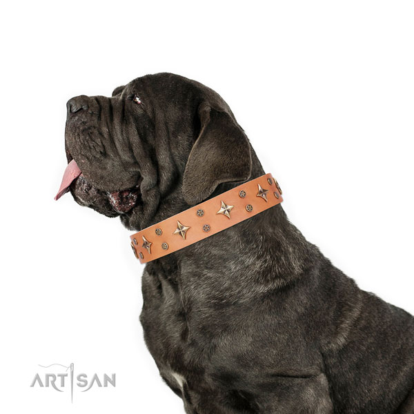 Mastiff top notch full grain leather dog collar for basic training title=Mastiff full grain genuine leather collar with decorations for walking