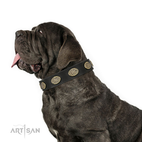 Mastiff convenient full grain natural leather dog collar for daily walking title=Mastiff full grain genuine leather collar with adornments for everyday walking