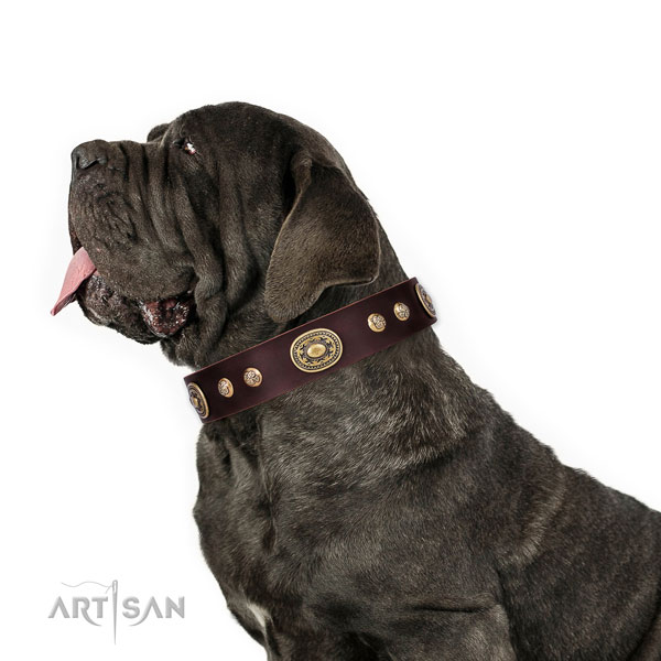 Mastiff fashionable leather dog collar for walking title=Mastiff full grain genuine leather collar with studs for comfortable wearing