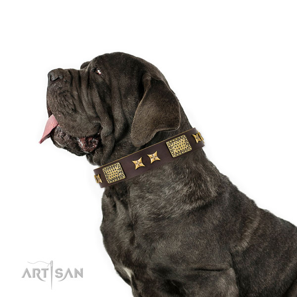 Mastiff perfect fit leather dog collar for handy use title=Mastiff full grain leather collar with embellishments for daily use