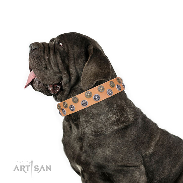 Mastiff stylish design genuine leather dog collar for comfortable wearing title=Mastiff full grain natural leather collar with adornments for fancy walking