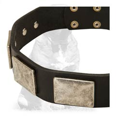 Strong heavy duty leather collar