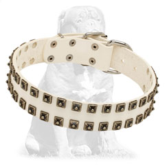 Super strong leather collar with studs