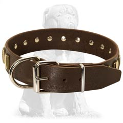 Durable buckled leather collar