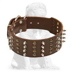 Decorated with studs and spikes leather collar
