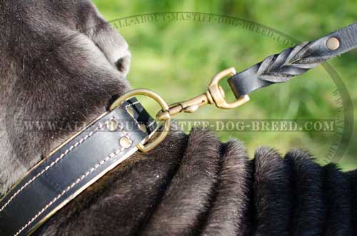 Non-rusting leather collar