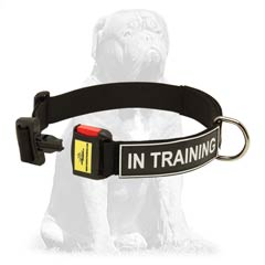 Special strong nylon collar with quick release buckle