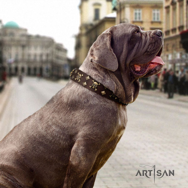 Mastino Napoletano easy wearing natural genuine leather collar with embellishments for your four-legged friend
