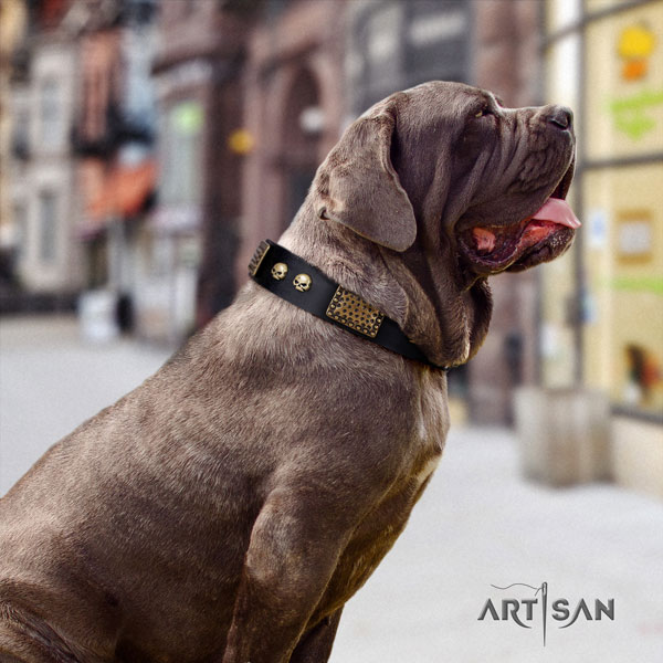 Mastino Napoletano awesome full grain natural leather collar with decorations for your doggie
