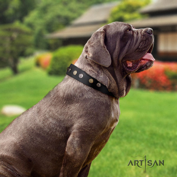 Mastino Napoletano easy to adjust full grain natural leather collar with adornments for your pet