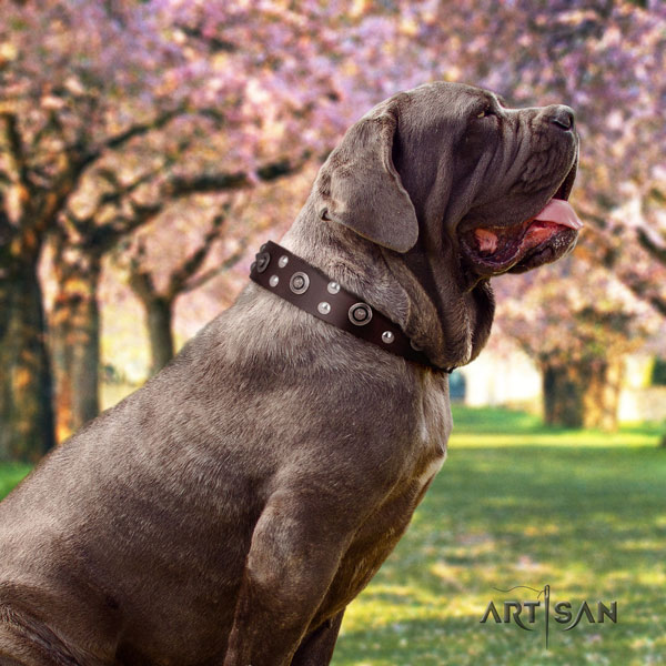 Mastino Napoletano trendy leather collar with decorations for your canine