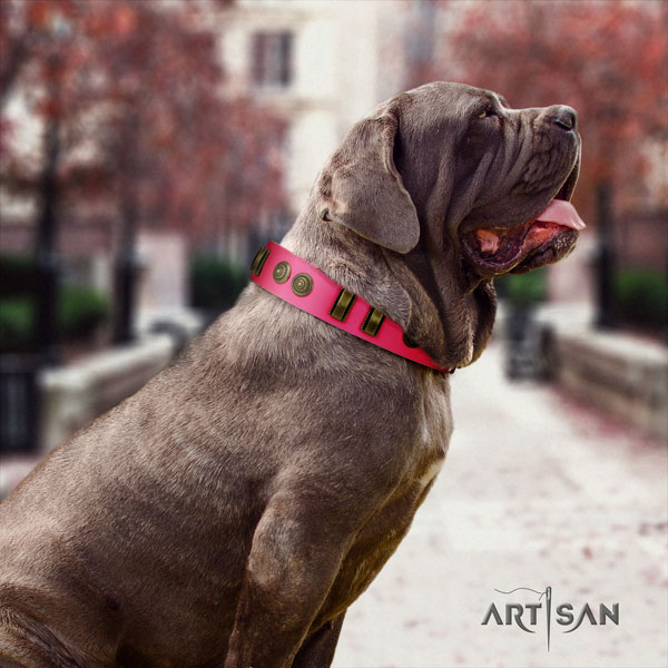 Mastino Napoletano exquisite full grain natural leather collar with decorations for your canine