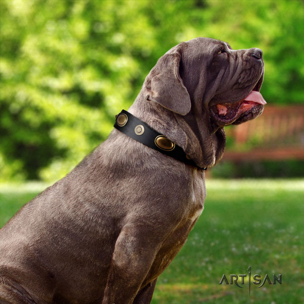 Mastino Napoletano stunning leather collar with decorations for your dog