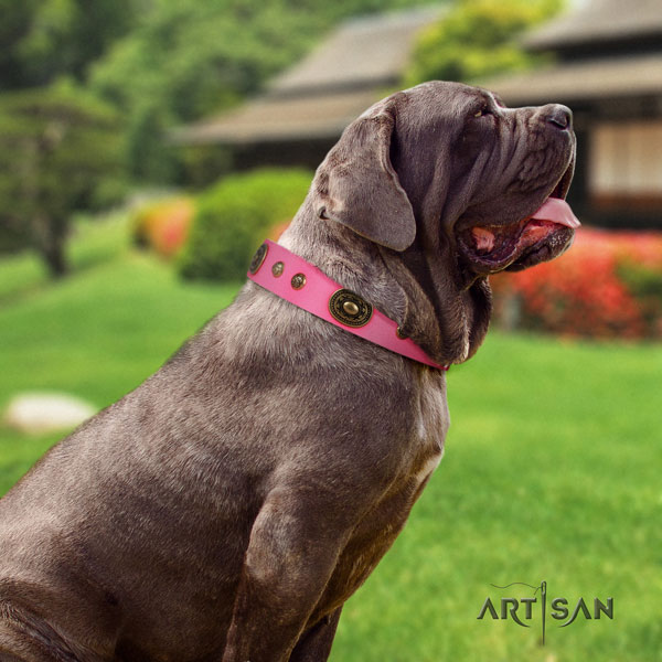 Mastino Napoletano stylish design natural genuine leather collar with studs for your dog