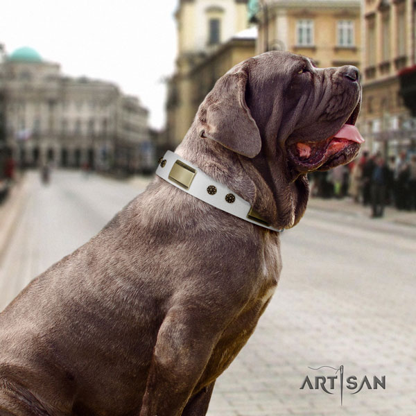 Mastino Napoletano adjustable full grain natural leather collar with studs for your pet