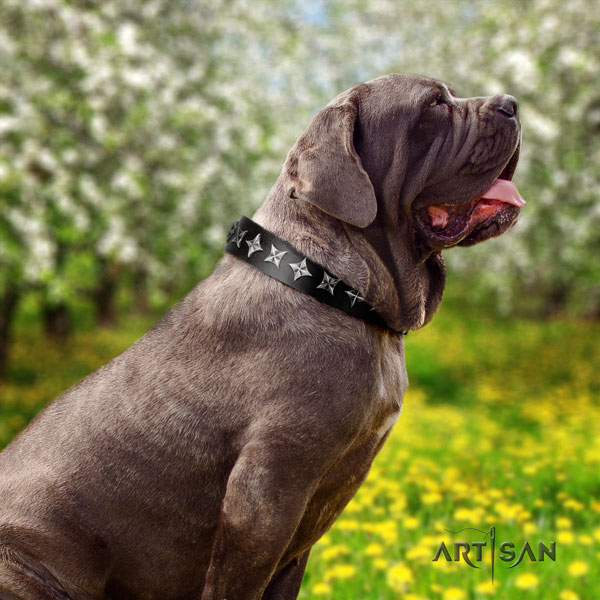 Mastino Napoletano remarkable natural genuine leather collar with decorations for your pet