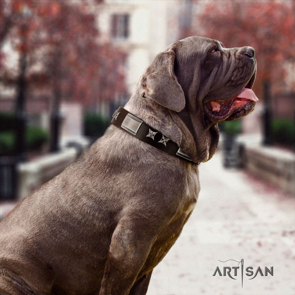 Mastino Napoletano unusual full grain leather collar with decorations for your canine