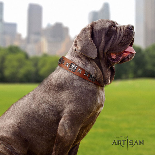 Mastino Napoletano exquisite full grain natural leather collar with decorations for your pet