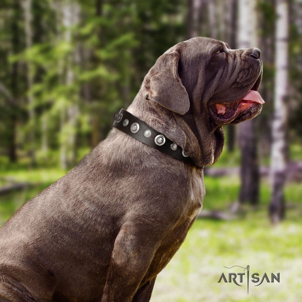 Mastino Napoletano comfortable natural genuine leather collar with decorations for your four-legged friend