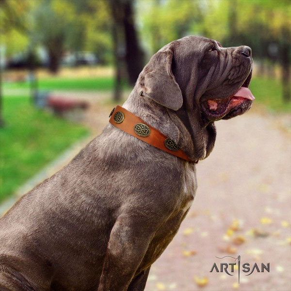 Mastino Napoletano easy adjustable leather collar with studs for your four-legged friend