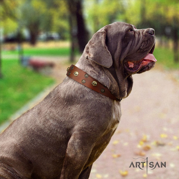 Mastino Napoletano stylish design genuine leather collar with embellishments for your pet