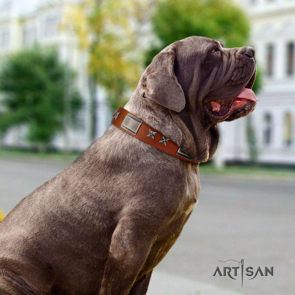 Mastino Napoletano top quality full grain natural leather collar with decorations for your pet