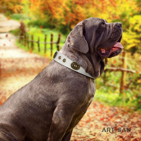 Mastino Napoletano exceptional full grain leather collar with embellishments for your four-legged friend